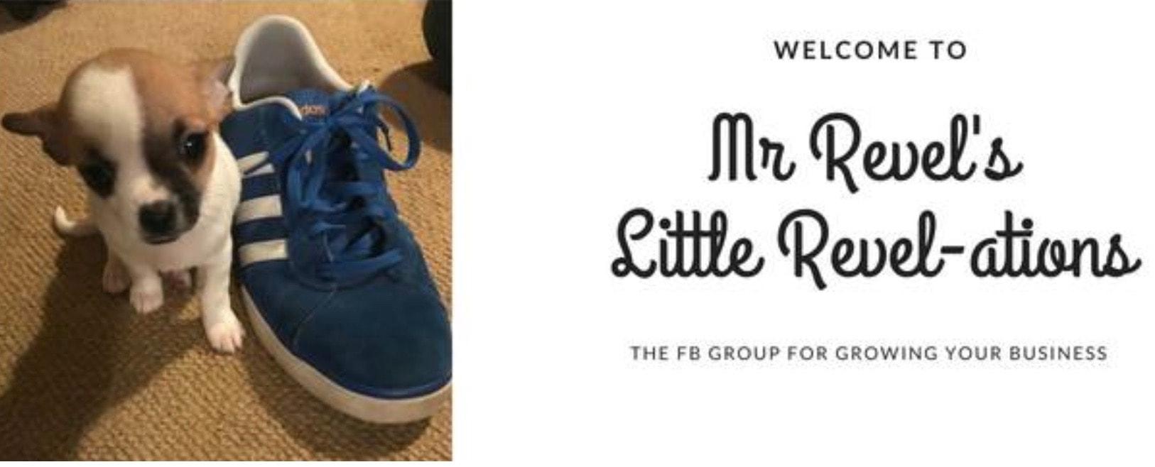 Mr Revels FB Group-min.jpg