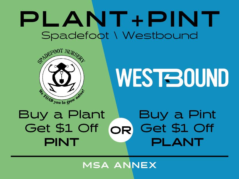 WB-plantpint-400x300.jpg