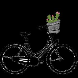 bikecactus.png