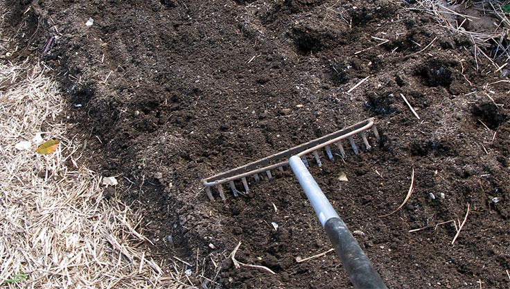 5060-raking-soil.jpg