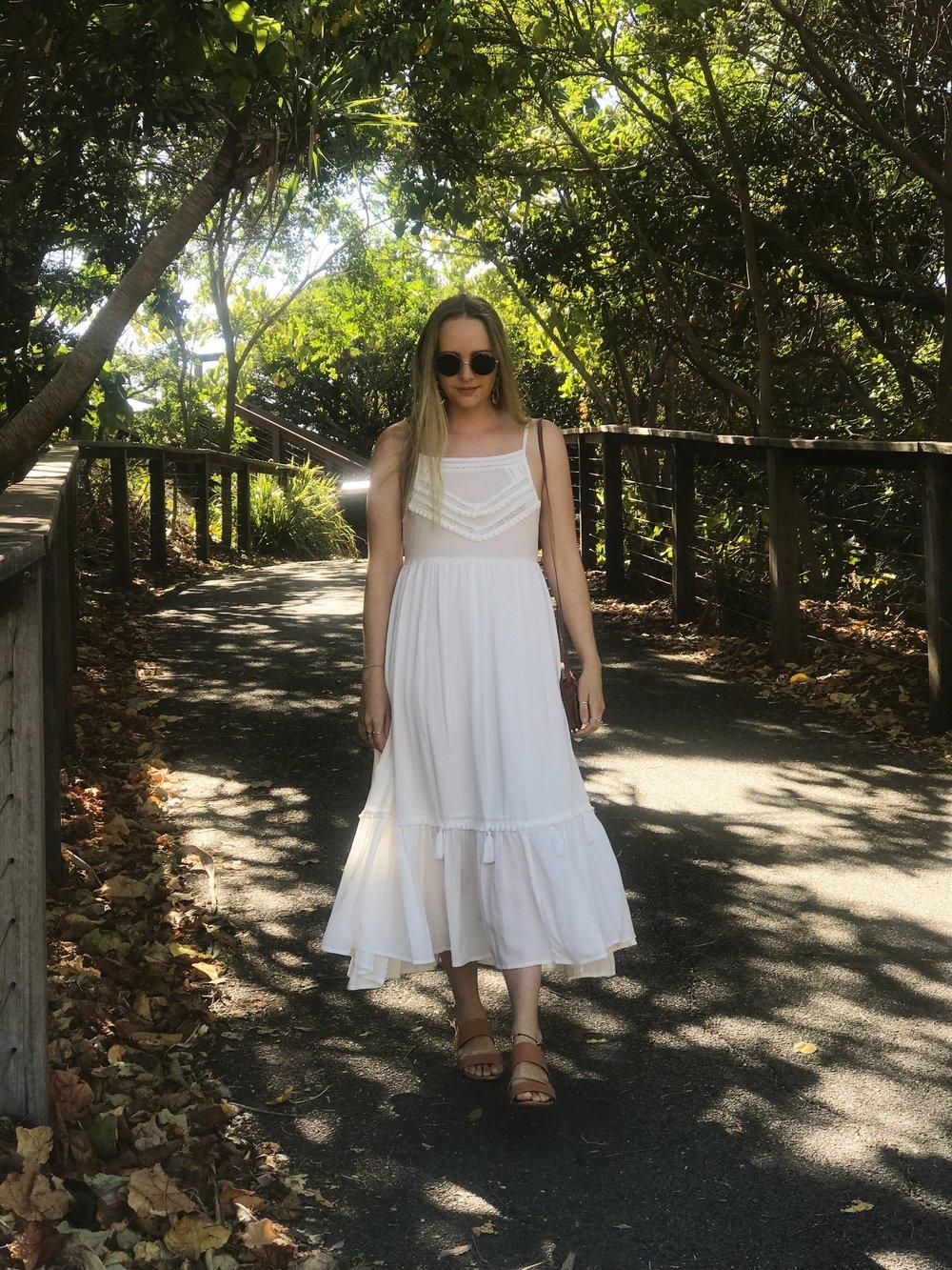 Luscious Rainforest Queensland