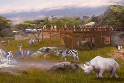 San Antonio Rhino.jpg