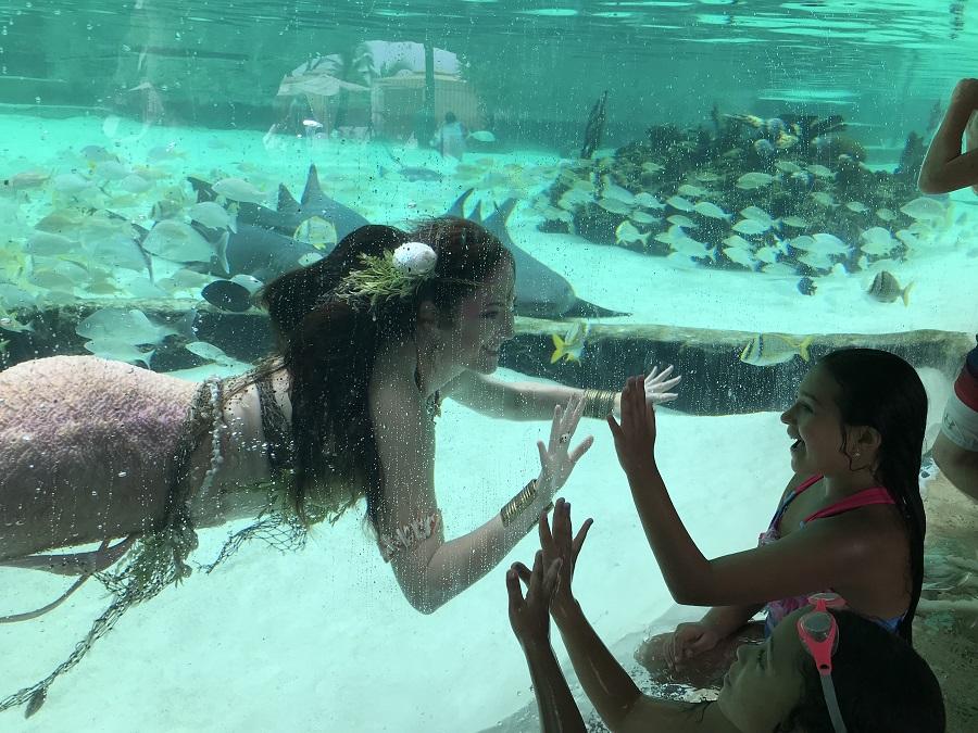 mermaid at glass mermiad kid.jpeg