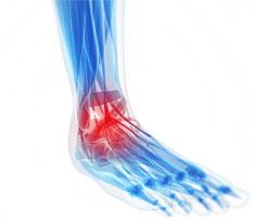 ankle2.jpg