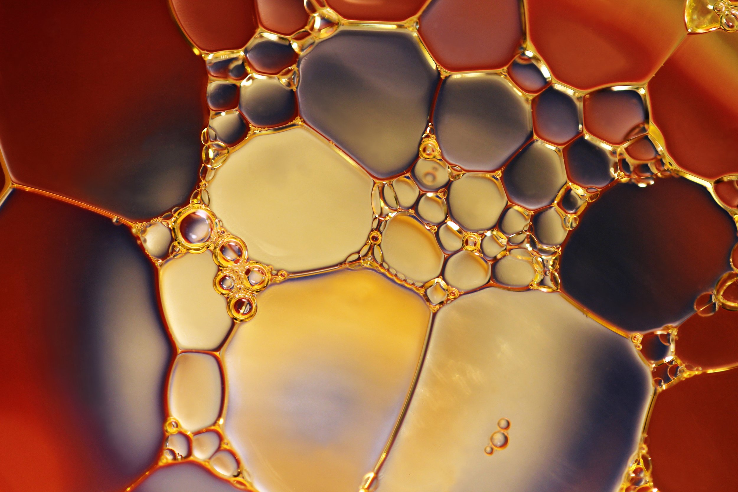 chemistry-close-up-color-220989.jpg