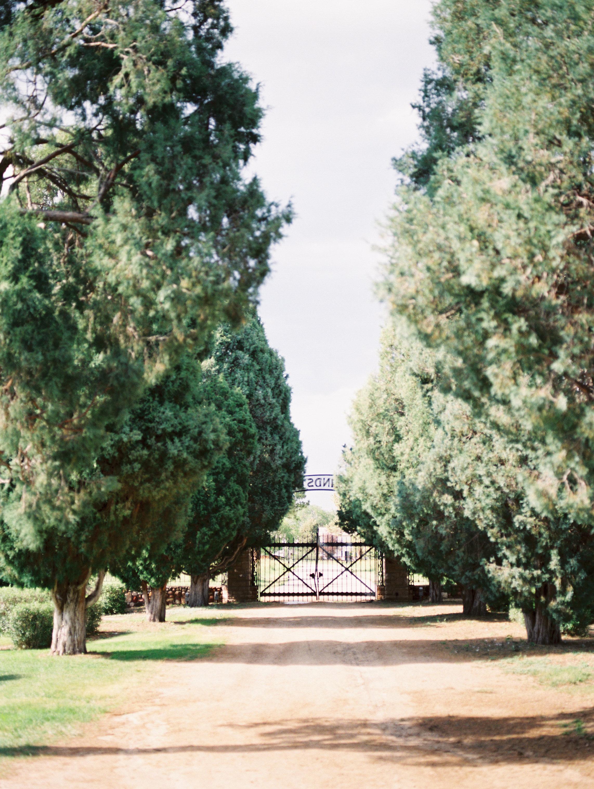 Beautiful-Classic-Mansion-Wedding74.jpg