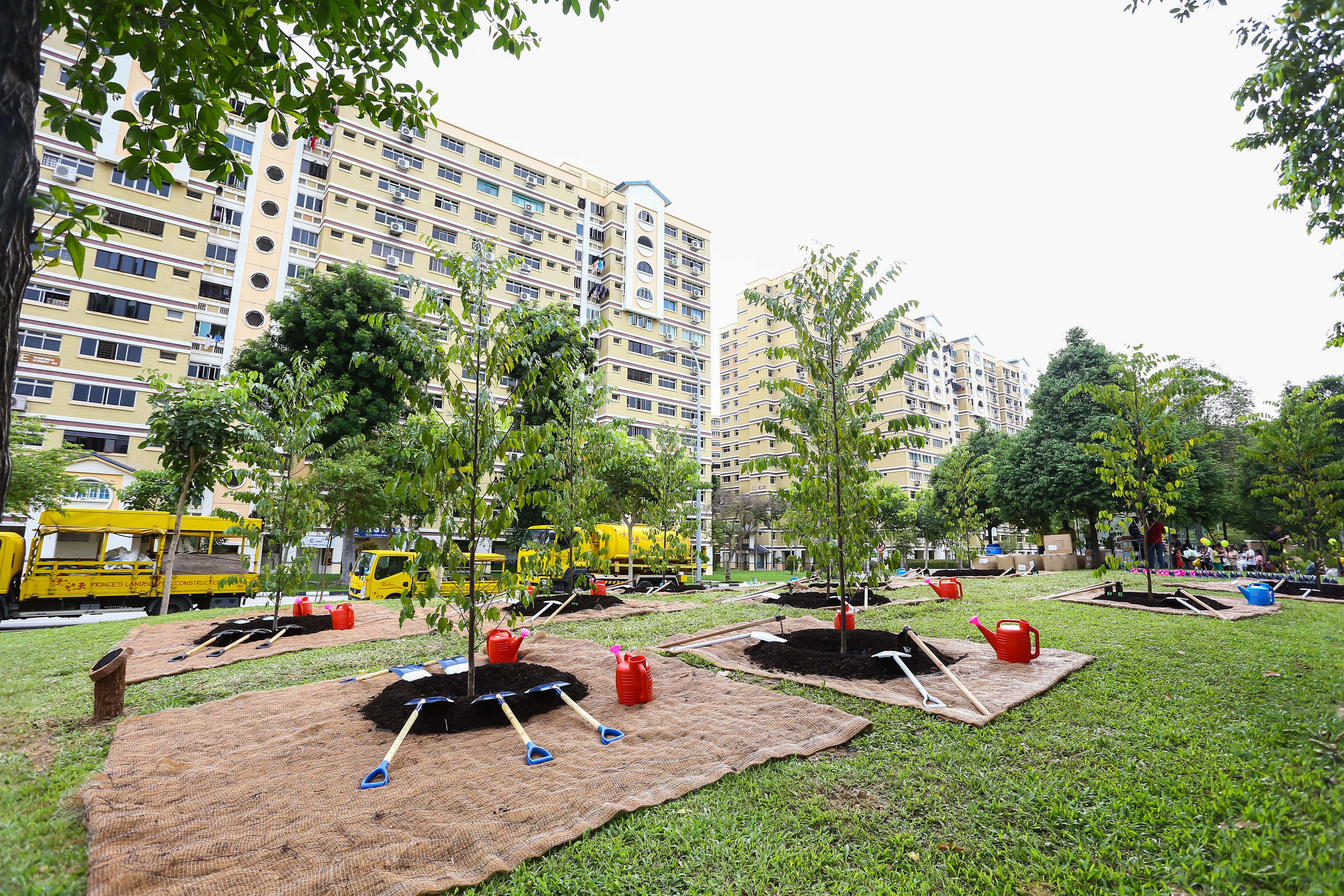Tree Planting 2018 - 3 of 160.jpg
