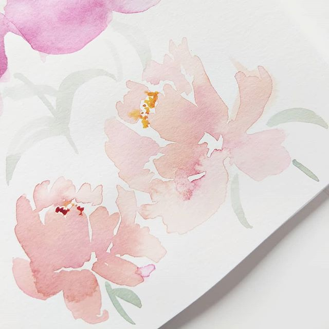 A little bit of sketchbook peonies. What have you been challenging yourself to do?  For me it's been working in my sketchbook on loose floral illustration rather than the tight ink to work that I really enjoy doing. I absolutely love the look of looser florals and I would love to master them. I'm also just digging this color scheme too!  @m.grahamco Watercolors and @princetonbrush Brushes  #illustrationgram #botanicalillustration #floralillustration #botanicalpainting #botanicalartist #floralsyourway #botanicallinedrawing #botanicalwatercolor #floralarthub #plantdrawing #floraldrawing #digitalillustration #instaartwork #illustrationoftheday #illustrationartists #emergingartist #illustrationgram #watercolorart #watercolorartists