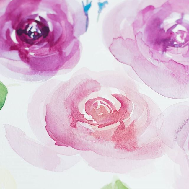 Who is your favorite Instagram account to follow?  Here are some loose watercolor roses. Still very out of my comfort zone, but I really enjoy how the looseness let's the colors shine.  @m.grahamco watercolors @princetonbrush brushes  #illustrationgram #watercolorart #watercolorartists #creativeentrepeneur #daretocreate #artistshouts #pnwartist #freelanceillustrator #artflow #colorcrushcreative #lineartist #acrylic_painting #seattleartists #paintpaintpaint #drawadot #CAFFEINATEANDCONQUER #wipart #blickartmaterials #artstrending #womenwhopaint #archespaper #artforhome #Smallartist #artists_magazine #womenwhodraw #supportlocalart #mgraham #blickseattle