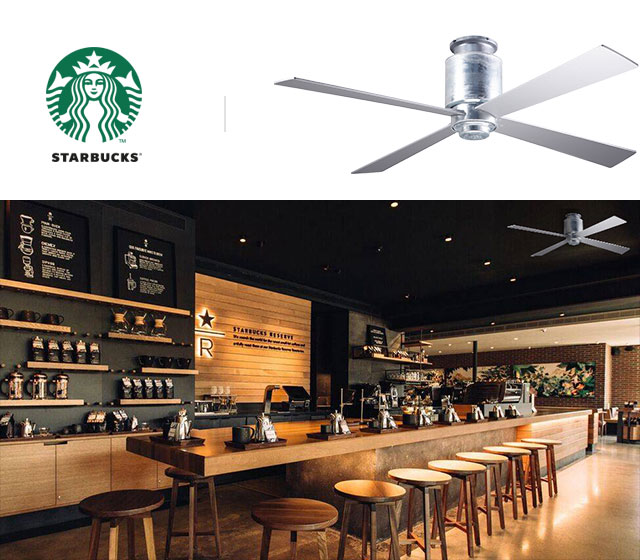 Modern-Fan_LapaFlush_Starbucks.jpg