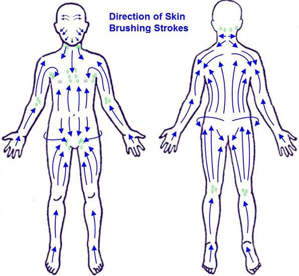 lymphatic-brushing-chart.jpg