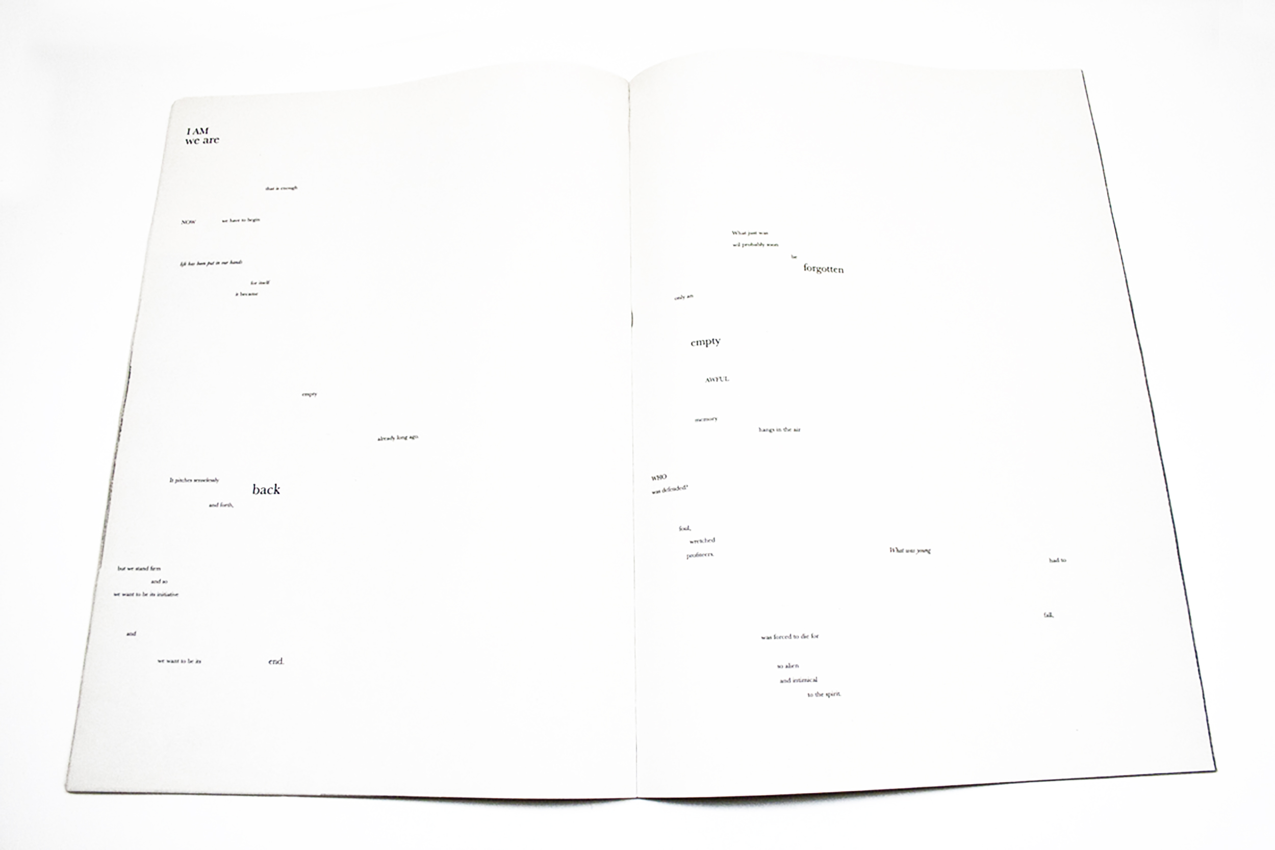 FARADAY_book_typographic-poem.jpg