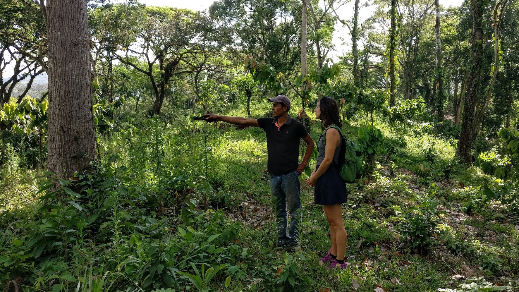 leonie-cacao-farm.jpg