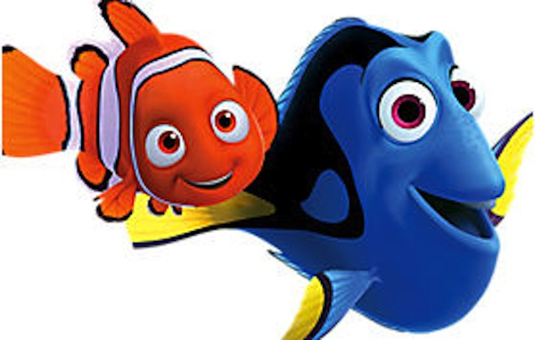 Nemo Party Hire