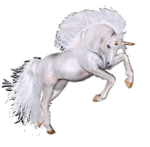 Unicorn Bouncy Castle Hire Rockingham