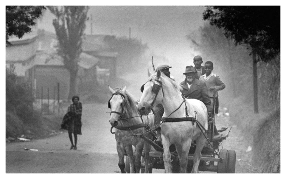 """c. 1970. Horse drawn cart in Alexandra Township."" Photo by Jan Nel.  © Rand Daily/Times Media"