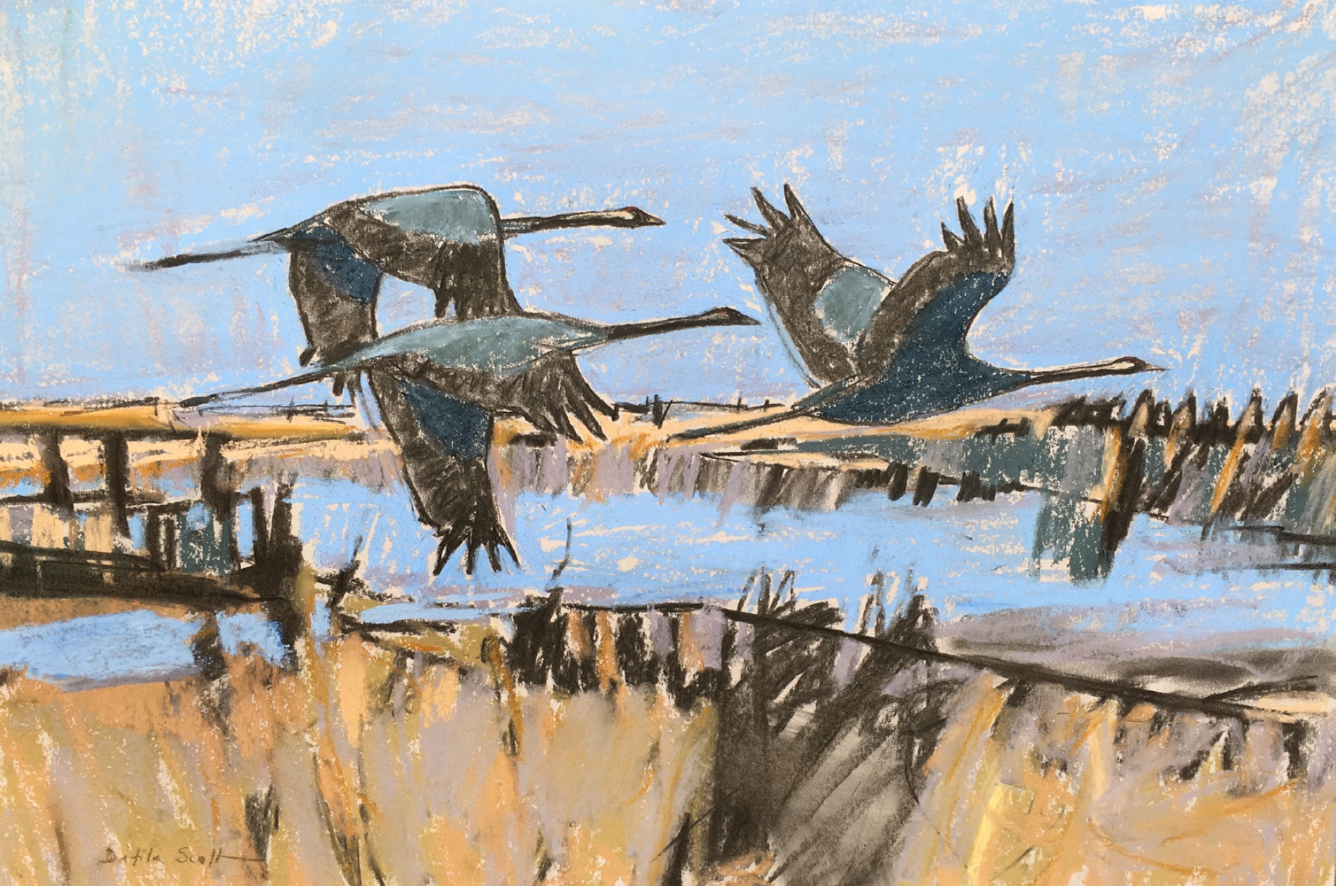 Dafila Scott - Cranes over the Fen