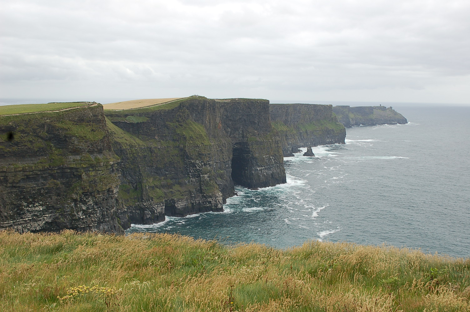 Cliffs of Moher    photo by L.D. Van Cleave