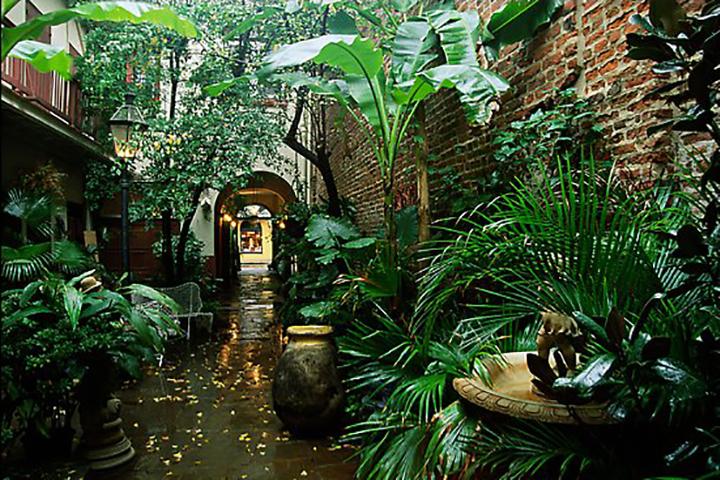 A verdant courtyard along Le Monde Creole Walking Tour (photo: Bill Coble)