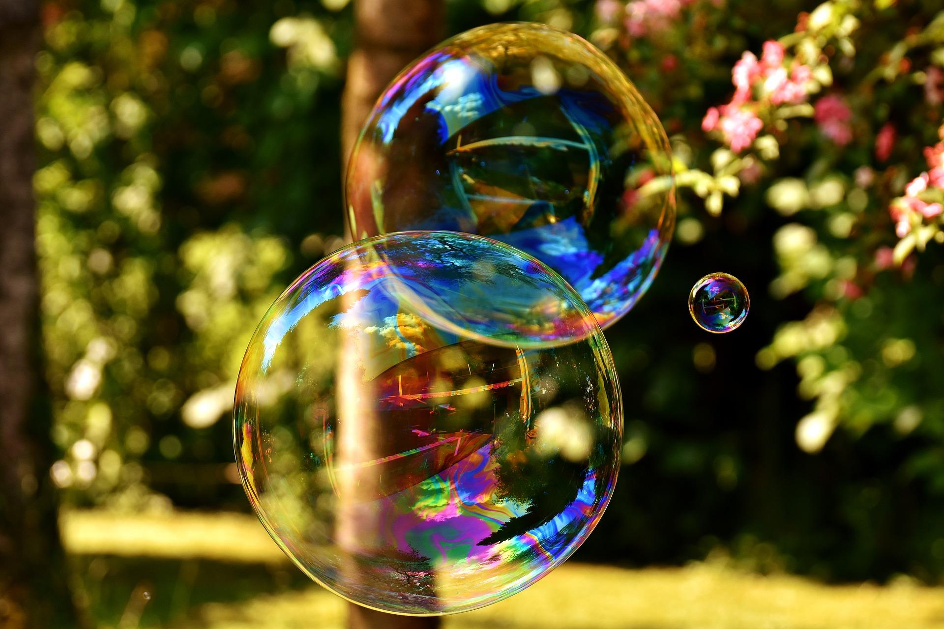 international bubble