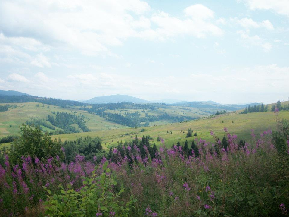7 things a summer in the Carpathian Mountains taught me