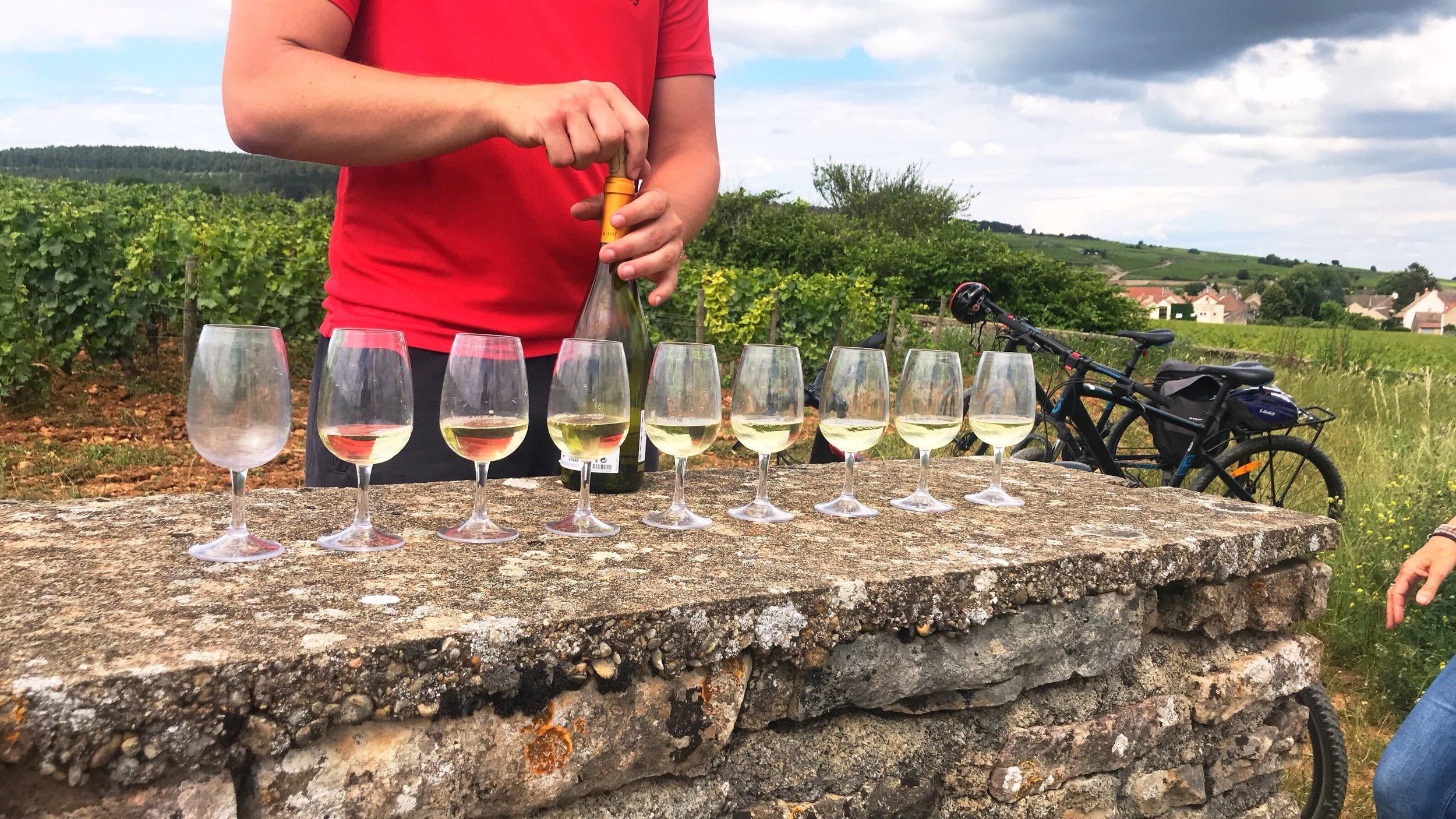 winetastingburgundy