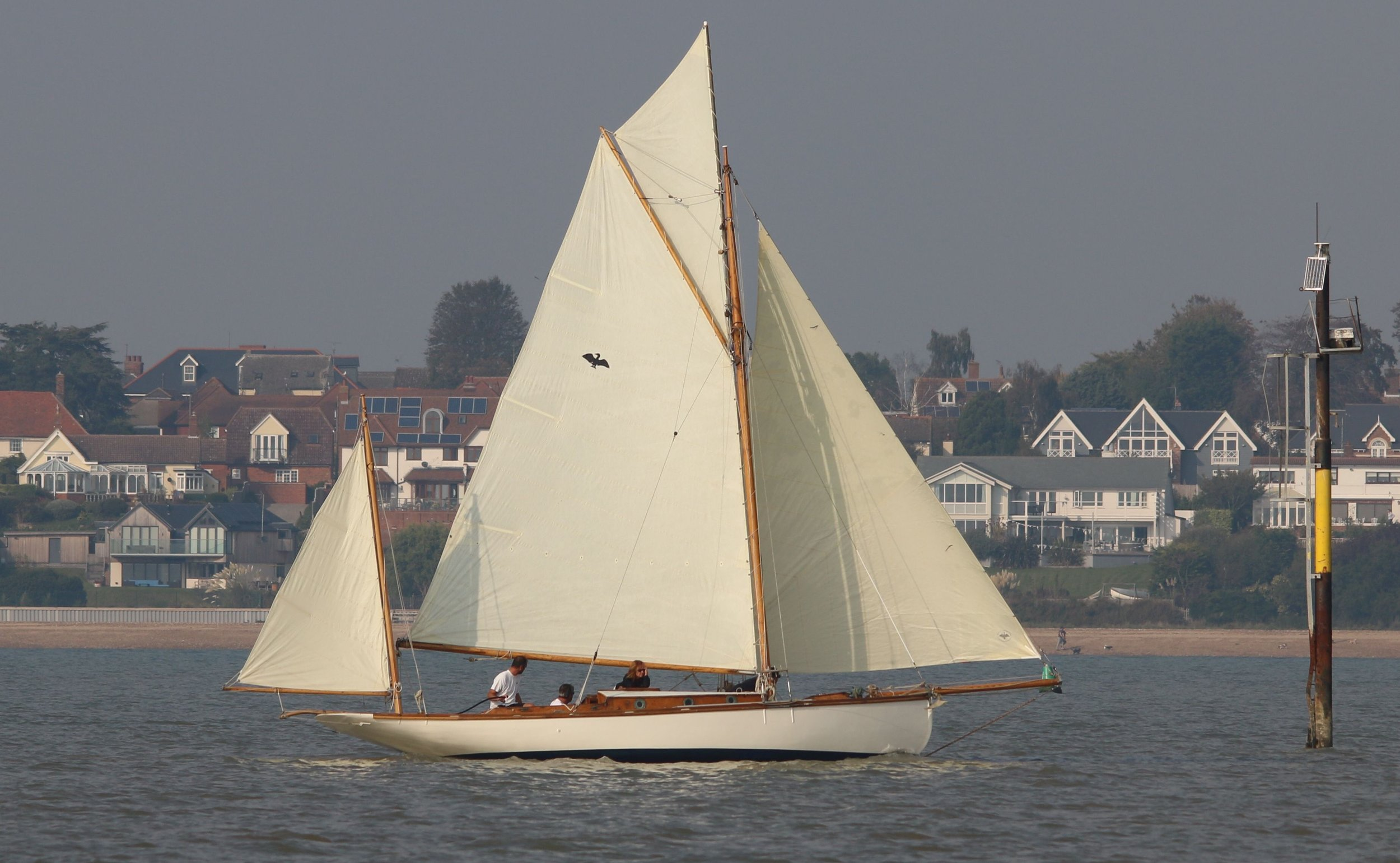 Cormorant - Ratsey and Lapthorn Classic Sails