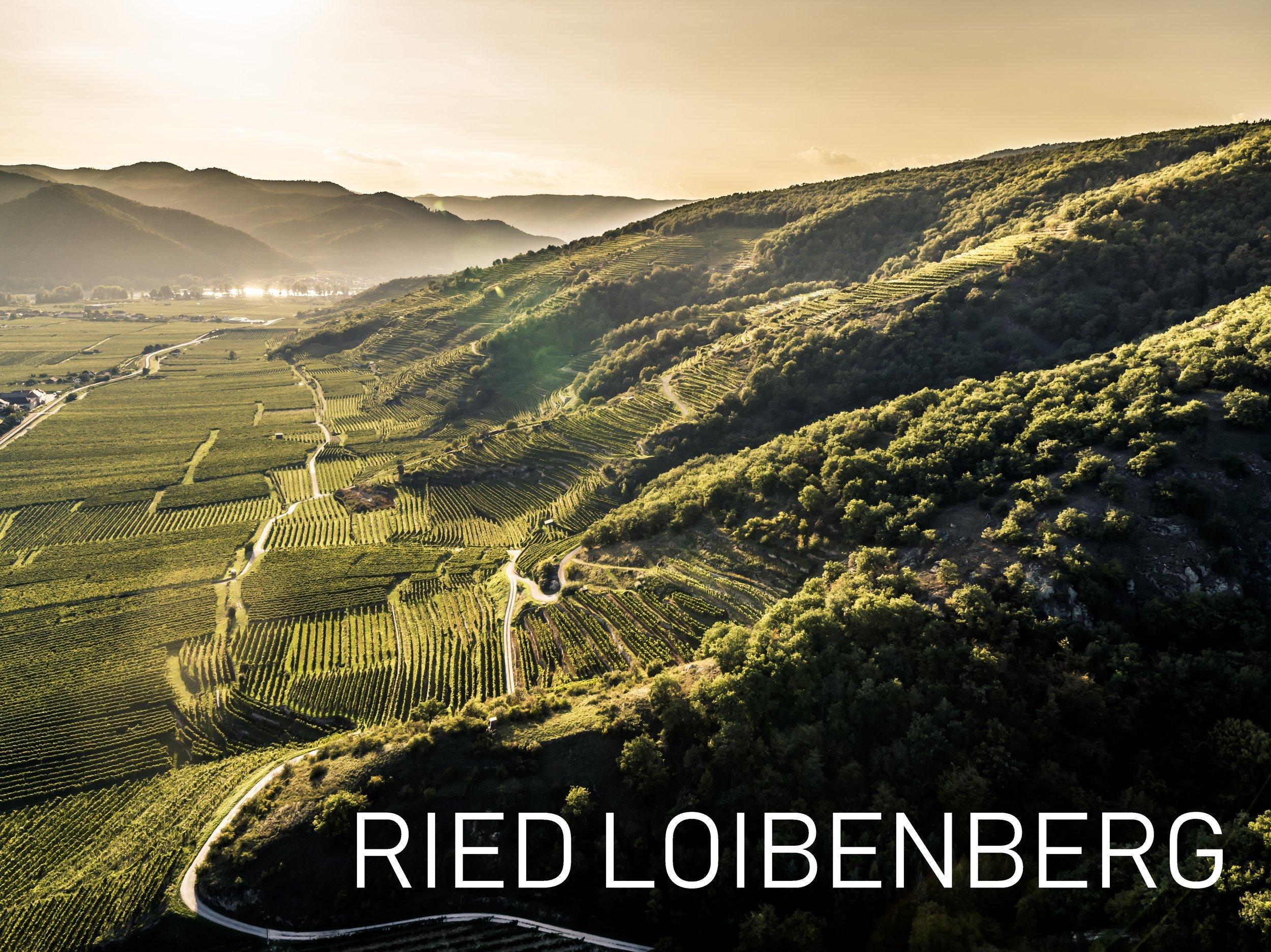 Herbst_Ried_Loibenberg.jpg