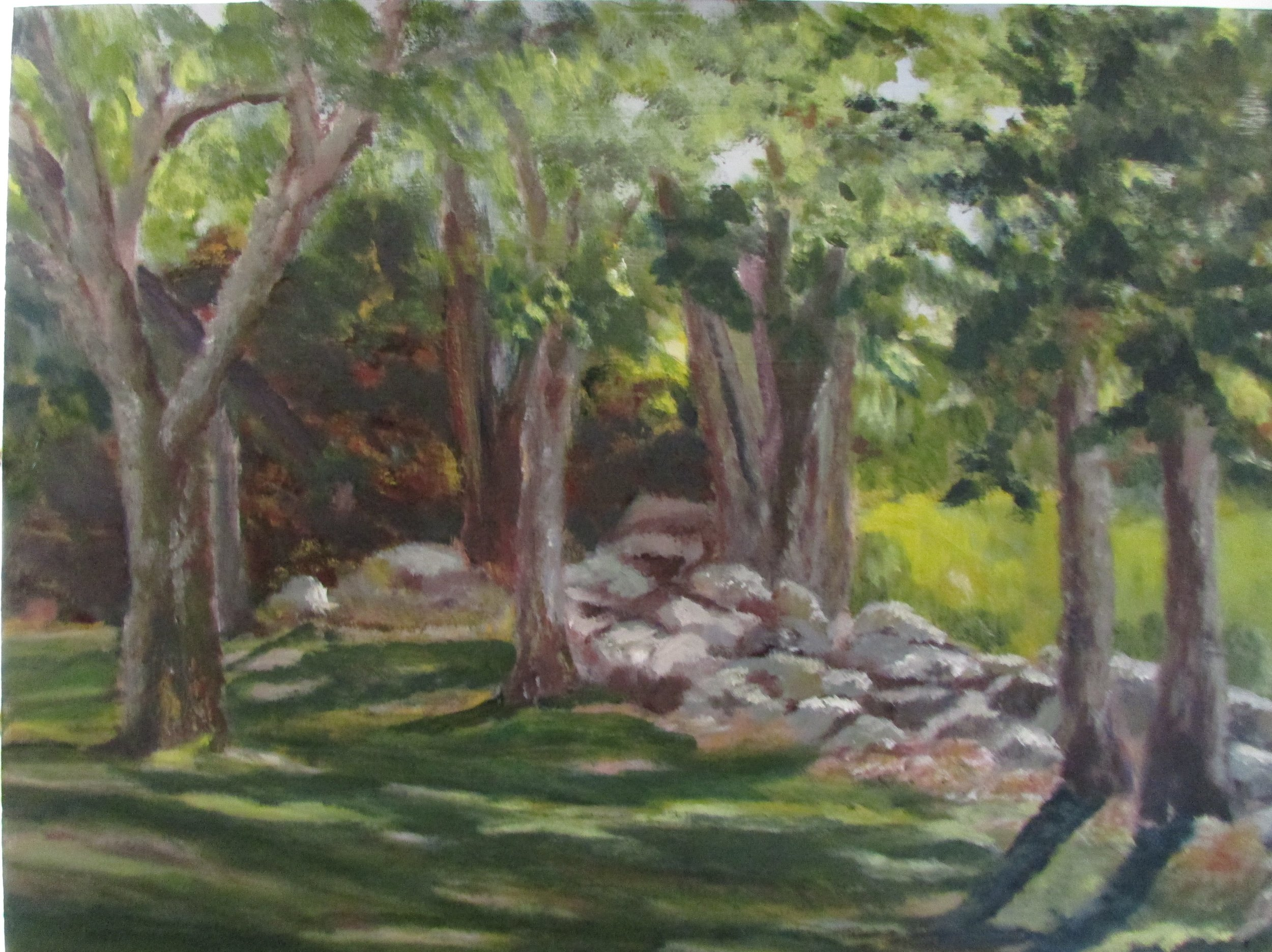 Dappled 16x20 Oil $325