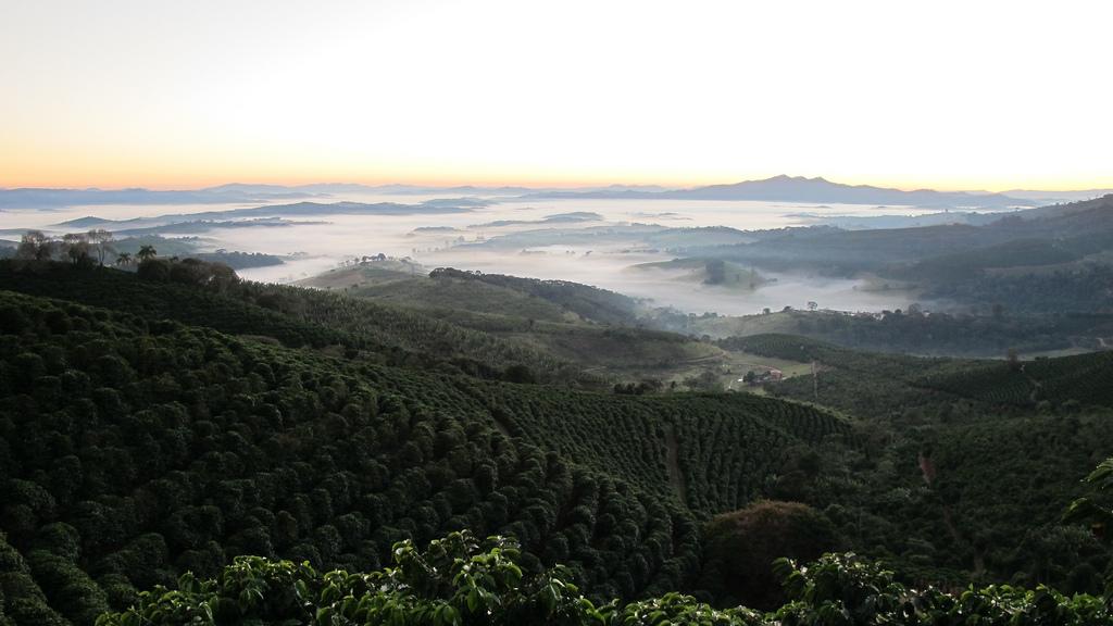 morning-panorama.jpg
