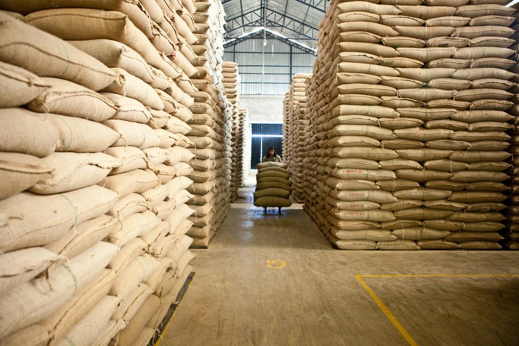 Warehouse in Coca Rive