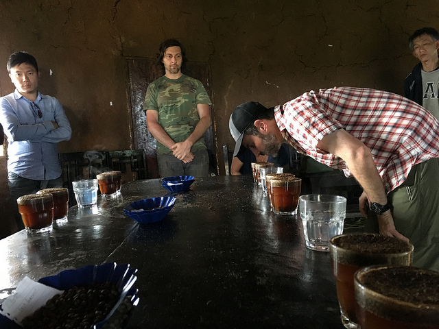 Cupping coffees picked and processed at Gesha Village, Ethiopia