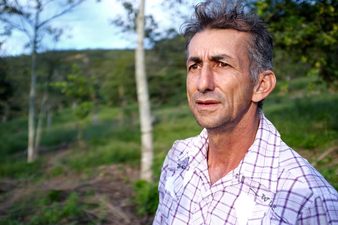Eight months of dry heat has left plants struggling to produce fruit. The farmer pictured above simply had no coffee production as of May, during the usual peak of harvest. Zero.