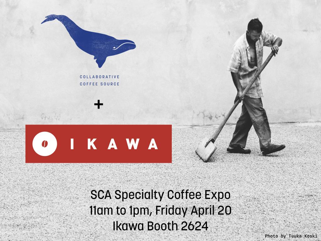 Ikawa x CCS SCA FINAL.001.jpeg