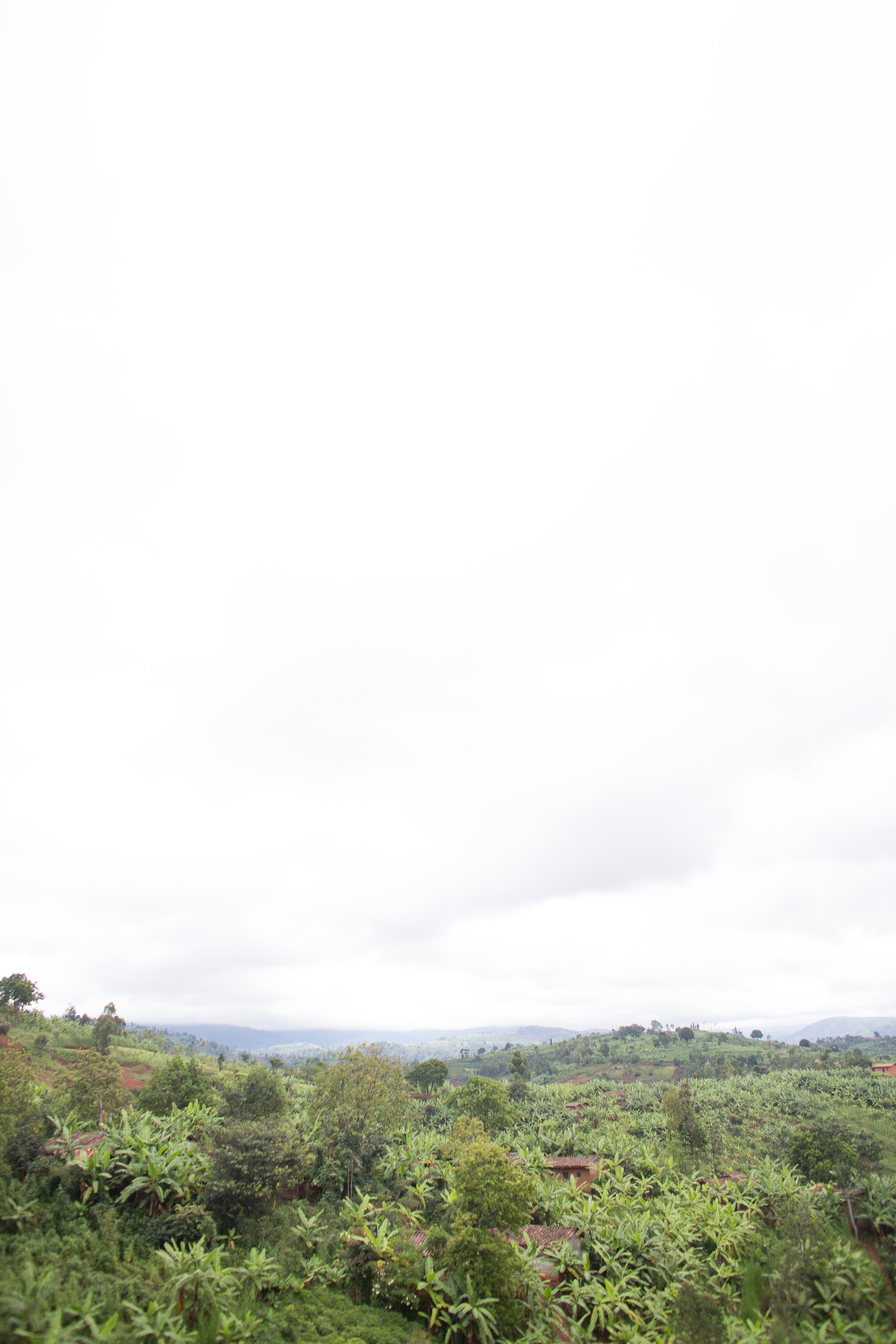 Mutana Hill, photo courtesy of Long Miles Coffee Project