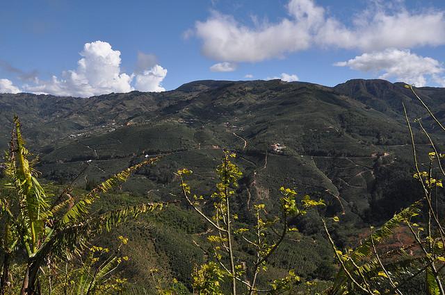Tarrazu, Costa Rica