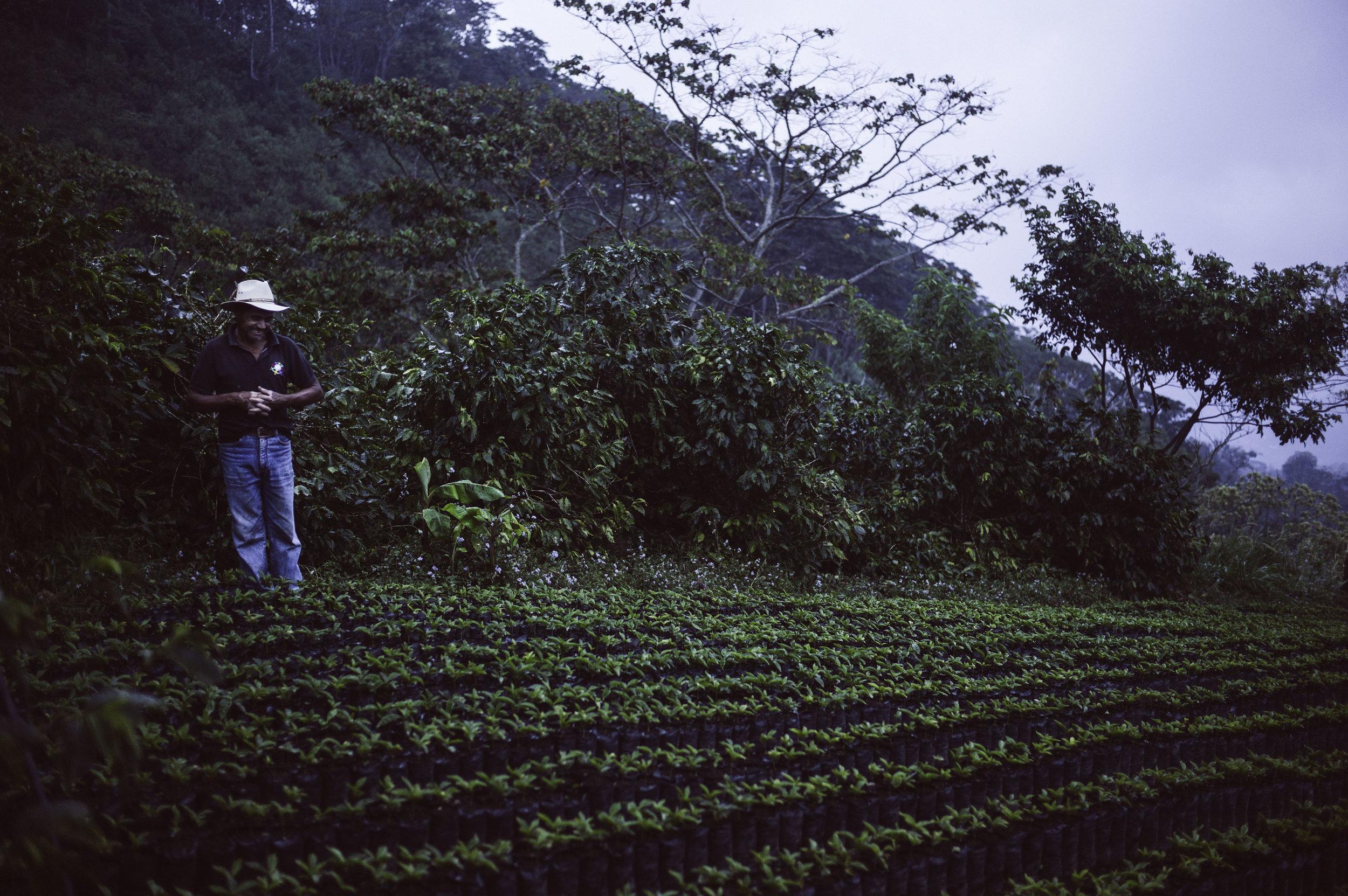 2014_03_06_tk_for_better_coffee_honduras_leica-124_final.jpg