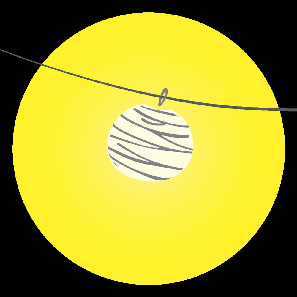 logo-FIN-lantern.png