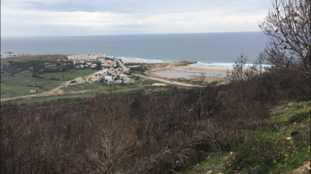 The property owner's house in Parc Perdicaris, with a very low key and casual view of Tarifa, Spain. Photo credit: Mallory Mrozinski, 2018