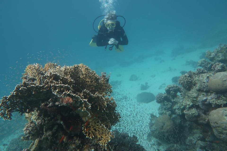 I visited Aqaba in February with a group of my friends. While I swam competitively in high school and spend a great amount of time free diving, I had never tried scuba diving despite it being on my bucket list. The idea of being so far below the surface made me nervous, but I was determined to try this activity. With the support of new AMIDEAST friends, I went scuba diving for the first time and had an incredible experience. To me, traveling abroad is about exposing yourself to new food, music, dance, people, and activities. Overall, my experience scuba diving made me proud of myself and led me to feel closer to my fellow AMIDEAST students. Photo credit: Markey, 2018