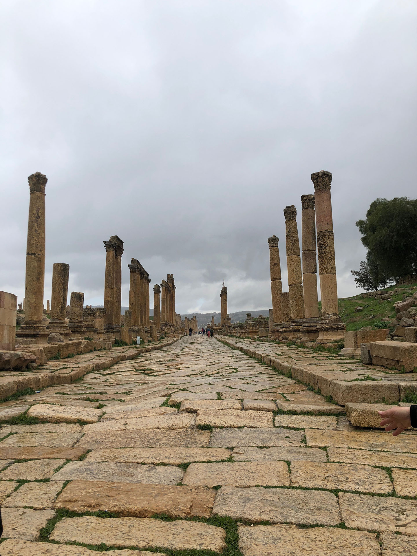 Amideast had an excursion to Jerash and Ajloun! Photo credit: Arguin, 2019