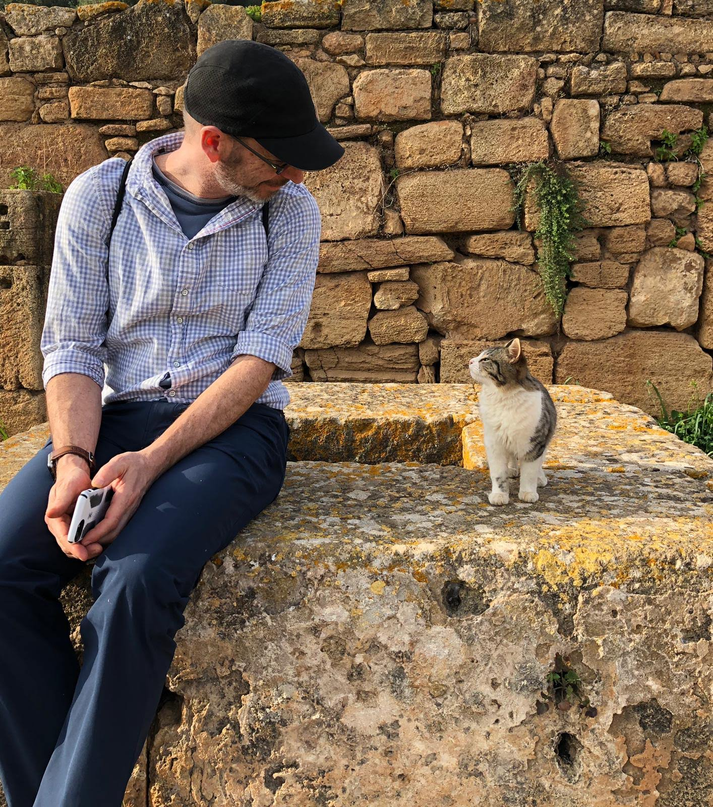 My father, an avid dog lover, caves to the charm of a sweet history-loving cat in the magnificent ruins in Rabat. Photo credit: Fisher, 2019