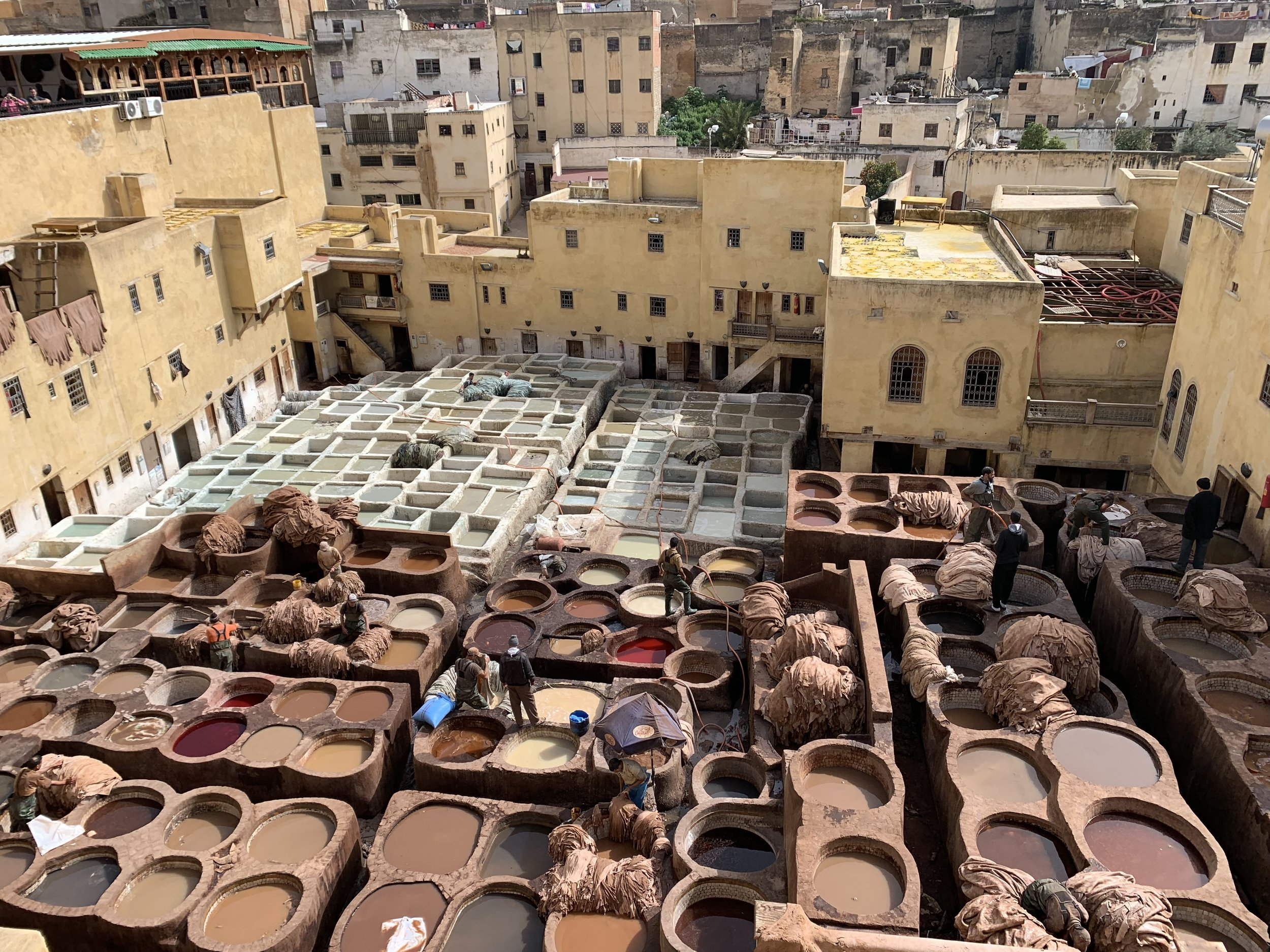 Our program took us on a two- day trip to Fez! We experienced this ancient city and its smelly tanneries; we had to use mint leaves to somewhat diffuse the stench. Photo credit: Lee, 2019