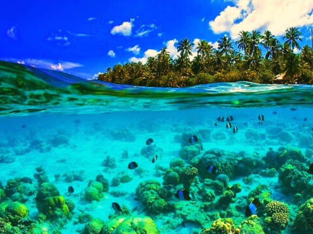 yachtEA-Seychelles.004.jpeg