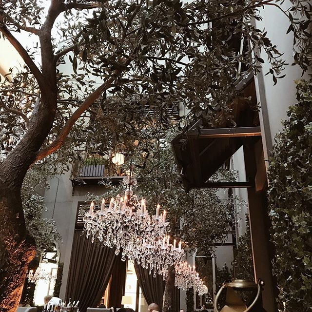 Enchanted Forest 🌿 . . . . . . . . #vscotravel #travelbloggers #globetrotters #flashesofdelight #girlswhotravel #beautifuldestinations #travelblogger #travelogue #globetrotter #bloggergirls #blogginggals #visualsoflife #contentcreation #interiordesignideas #decorideas #restorationhardware #torontofood #torontoeats #torontophotography #yyzeats #yyzblogger #torontovlogger