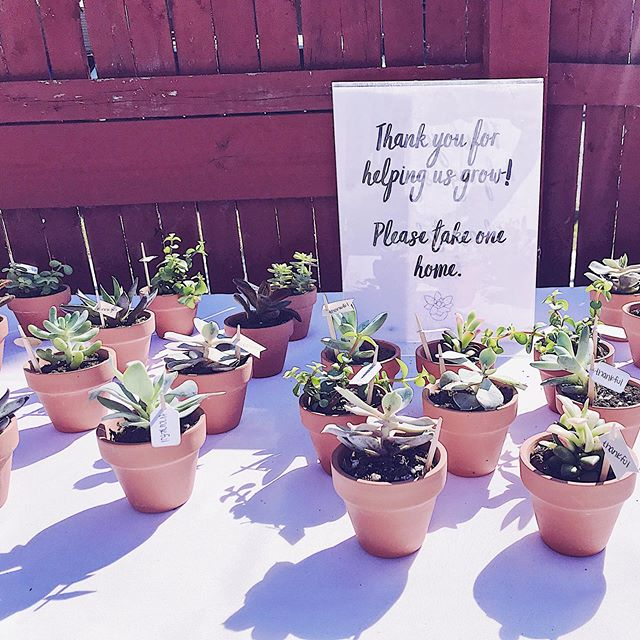 My event assistant (aka my 4-year-old, Jax) and I had a great time potting these gorgeous little succulents from @urbanrootsbflo for a donor stewardship event. How cute do they look!? 🌱 ⠀⠀⠀⠀⠀⠀⠀⠀⠀ #liveinspired #livinginspired #inspire #inspo #nonprofit #nonprofits #nonprofitlife #eventplanner #eventmanager #event #events #donorlove #grateful #gratitude #favors #favorideas #eventideas #eventinspo #fundraising #inspiration #summerevent #gardenparty #succulent #succulents #momboss #eventplannerlife #boymom #bossbabe #buffalobossbabe