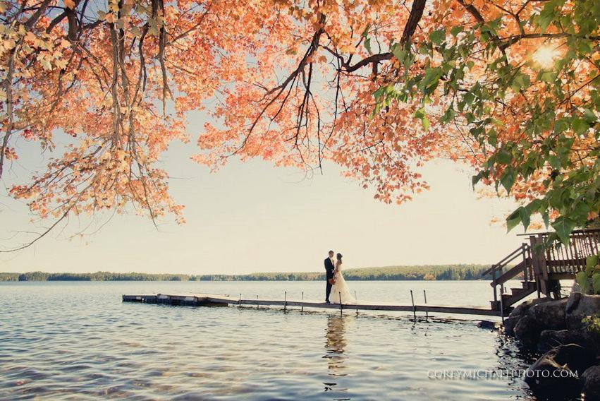 dock and leaves.jpg