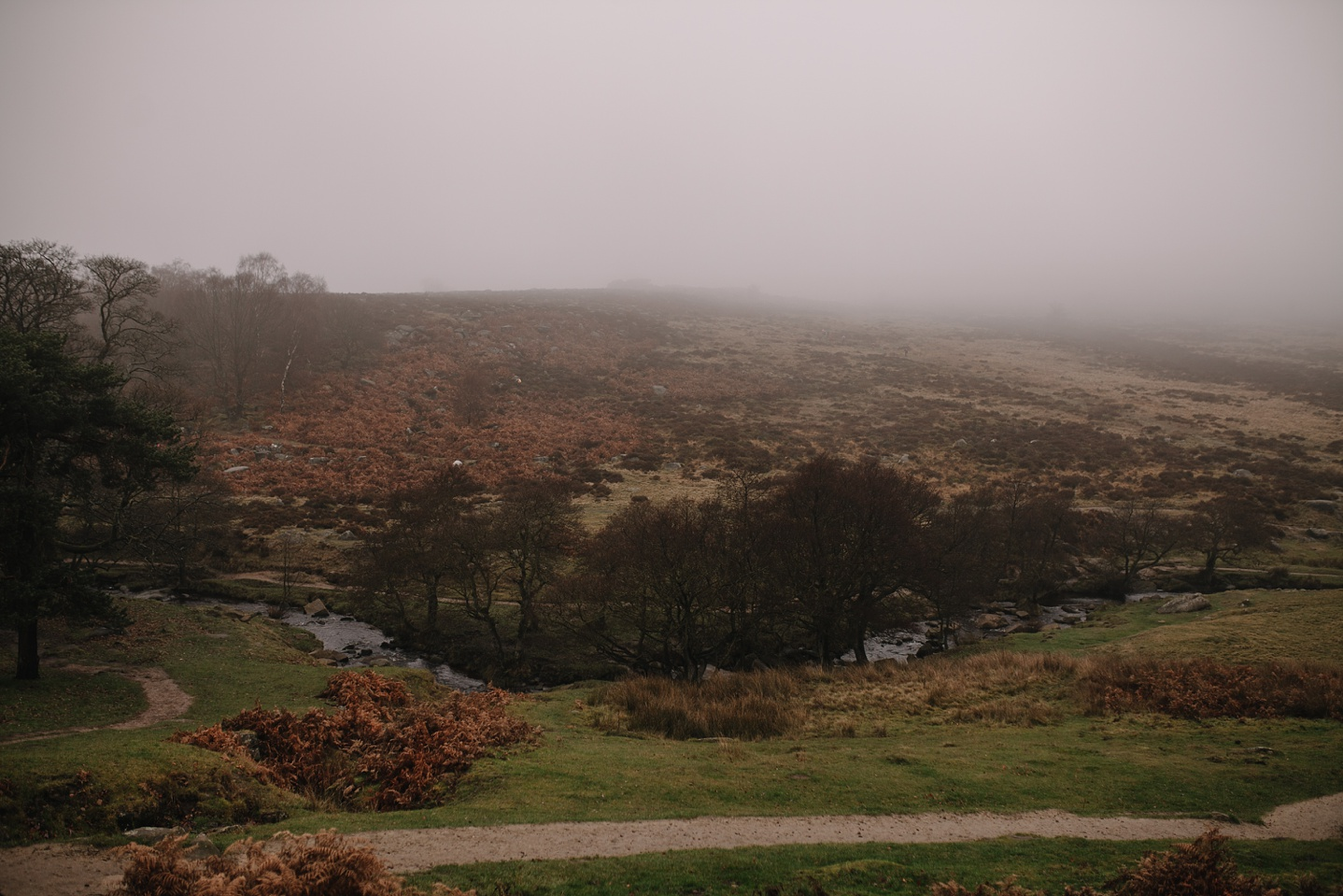 Foggy, autumn landscape of the river at Padley Gorge Sheffield
