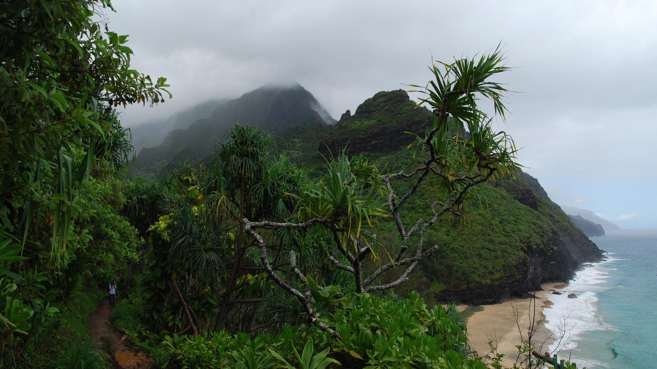 Hawaii1 copy.jpg