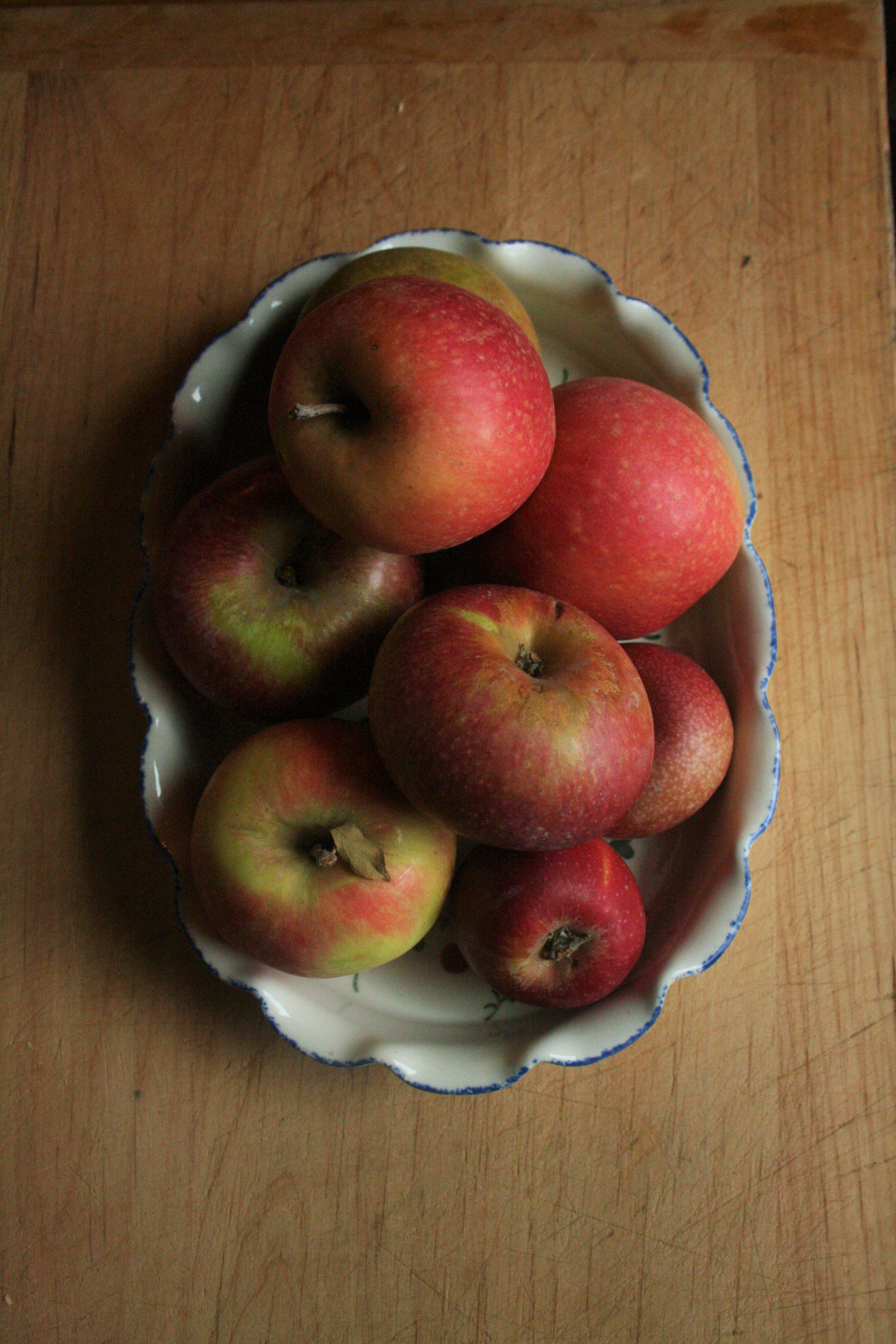 Mixed heirloom apples.jpg